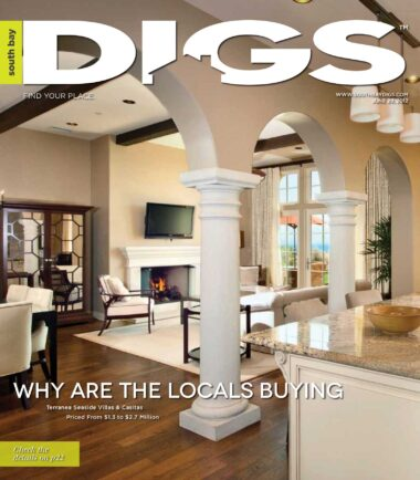 digs, south bay digs, magazine, issue 41, June 29, 2012