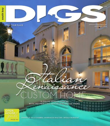 digs, south bay digs, magazine, issue 97, November 7, 2014