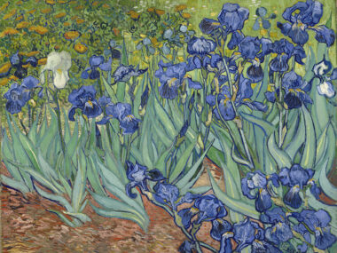 Irises Vincent Van Gogh, Getty Museum