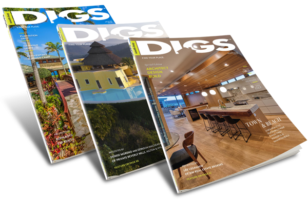 DIGS Special Editions