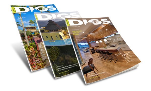 DIGS Magazine Special Editions