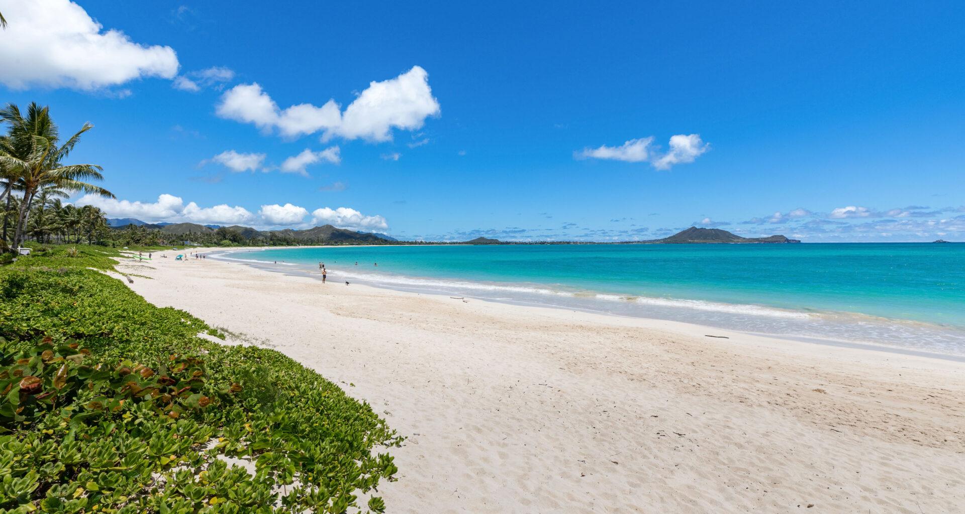 146 S Kalaheo Avenue, 146 kalaheo ave, Kailua, Hawaii, Tracy Allen, Coldwell Banker