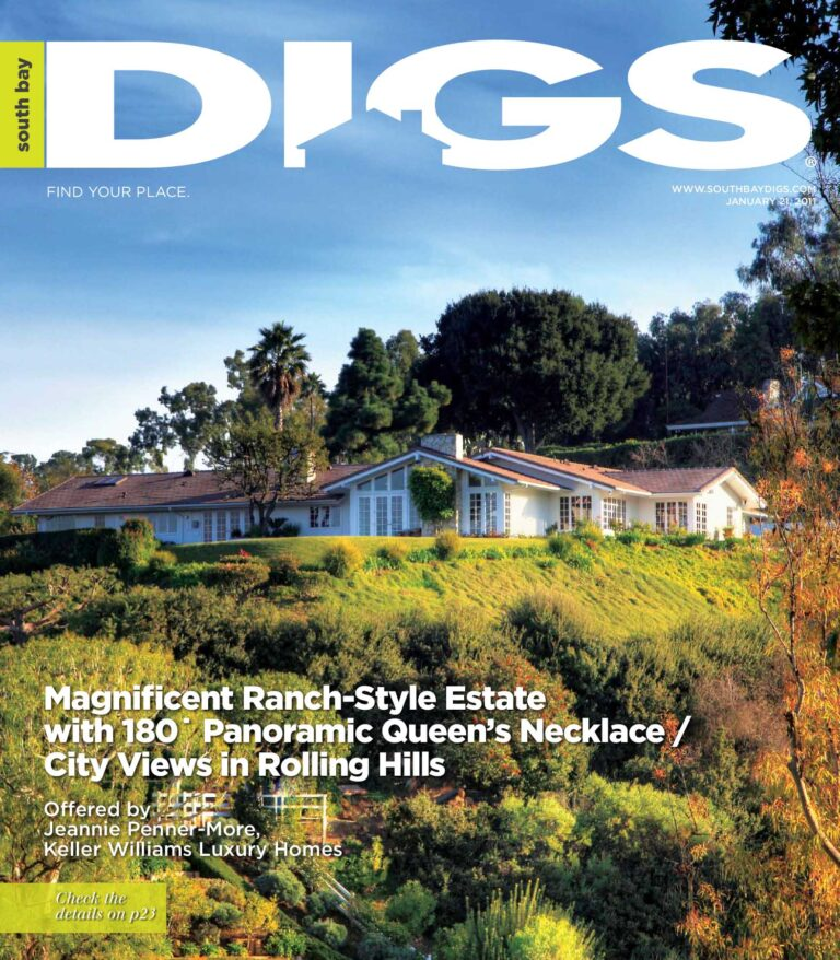 digs, south bay digs, magazine, issue 6, january 17, 2011