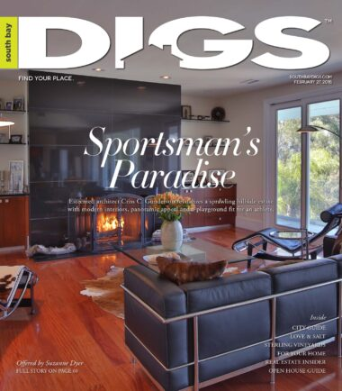 digs, south bay digs, magazine, issue 104, February 27, 2015